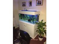 Aquarium full set up.
