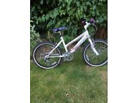 Girls Raleigh Bike, 20 in wheels,excellent condition