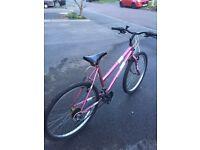 """Ladies Dunlop Club Bicycle 19"""" wheels pink"""