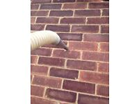 Cavity Walls Insulation Sales Surveyors