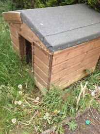 Dog shed 30 pound needs collected asap