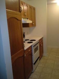 SPACIOUS 2BR LOWER LEVEL  H/HW/LIGHTS $820 JUNE