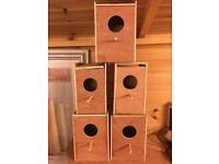 Newly made budgie x lovebird boxes