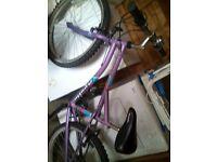 apollo subine girls bike 24 in wheel and in good condition,