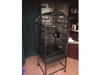Parrot cage excellent condition only had a parrot in ot for 4 months , so like new