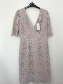 Reiss Dahlia fitted lace dress. Cloud (blush pink)