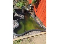 Pre formed fish pond