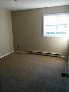 Roomy 1 bedroom just off Cashin Ave. St. John's Newfoundland image 4