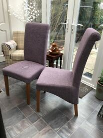 Pair of Chairs from Next