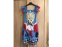 Alice in wonderland fancy dress (Halloween)