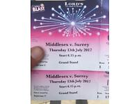 Middlesex v Surry T20 cricket at Lords.