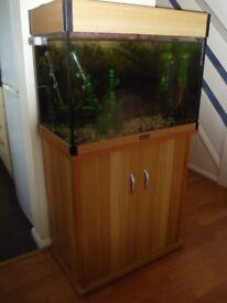 Large Aqua One Fish Tank