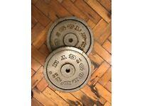 Gold's Gym 15kg Iron plates (x2)