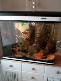 Full fish tank set up incuding fish