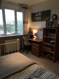 Small cosy Double Room in Dalkeith to rent Bills inc Furnished nice view house share
