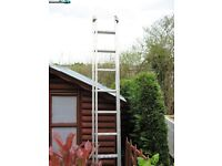 YOUNGMAN EXTENSION LADDER