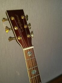 Tanglewood TW900 NA Acoustic Guitar