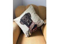 Thierry Poncelet Labrador Cushion 45cm in Cream