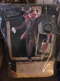Mad hatter fancy dress or Halloween costume