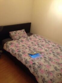Double room to rent 5 mins from city centre Cardiff