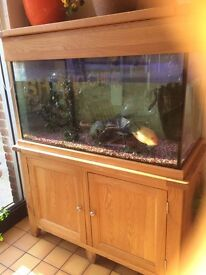 Aquarium tank 400 litre