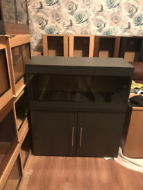 brand new 3ft vivarium and cabinet in graphite