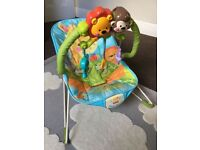 Fisher Price, Precious Planet bouncy chair