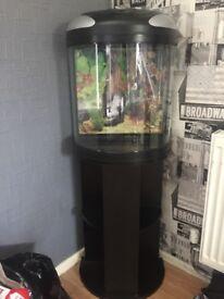 39l Fish Tank