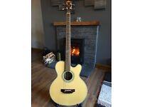 Washburn AB-34 Acoustic Bass