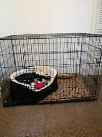 XXL dog cage for sale