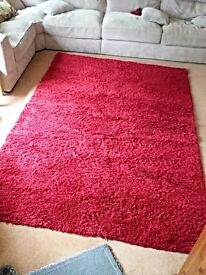 Red shaggy rug.
