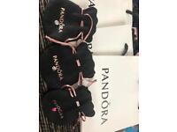 Pandora locket charms
