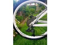 """24"""" rear Halo Tornado wheel"""
