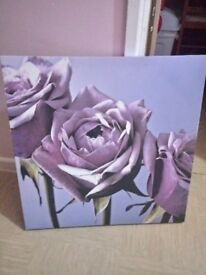 Large purple rose canvas