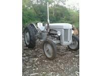 Vintage ferguson TE20 tractor
