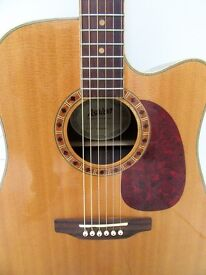 Ashton D65SCEQ Acoustic guitar with pick up, EQ and tuner built in.