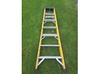 2 ladders for sale - Step ladder and Fibre glass