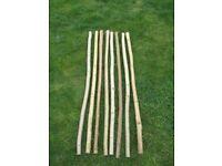 Walking Stick Shanks (Unseasoned Blanks) - Hazel and Ash- £5 Each or 3 Sticks for £10