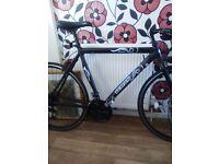 Teman racer bike