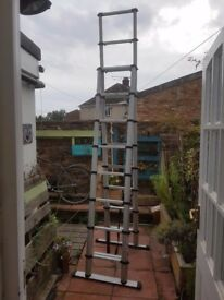 Telesteps 3.0m Combination Telescopic Ladder