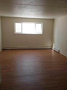 2 Bedroom Furnished -  - Royal Oak - Apartment for Rent Edmonton Edmonton Edmonton Area image 3