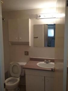 2 Bedroom Furnished -  - Royal Oak - Apartment for Rent Edmonton Edmonton Edmonton Area image 10