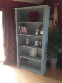 Large Bookcase Painted in Annie Sloan's Duck Egg Blue