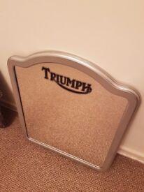 Triumph mirror