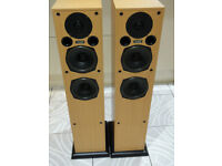 Acoustic Energy AE109 Floor Standing Speakers Bi-wireable Award Winners