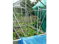 greenhouse, aluminium 8 foot glass greenhouse growing room