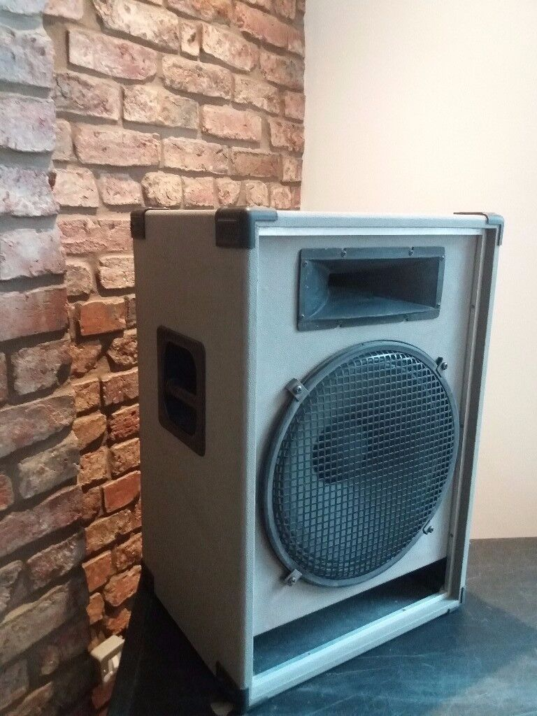 Speaker Cab with 15 inch driver and radial horn