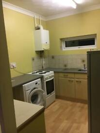 Large 1 bedroom flat
