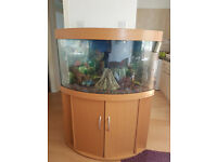 JUWEL TRIGON CORNER FISH TANK AND STAND FOR SALE,,FULL SET UP