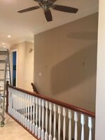 Professional painter with 20+ years of experience